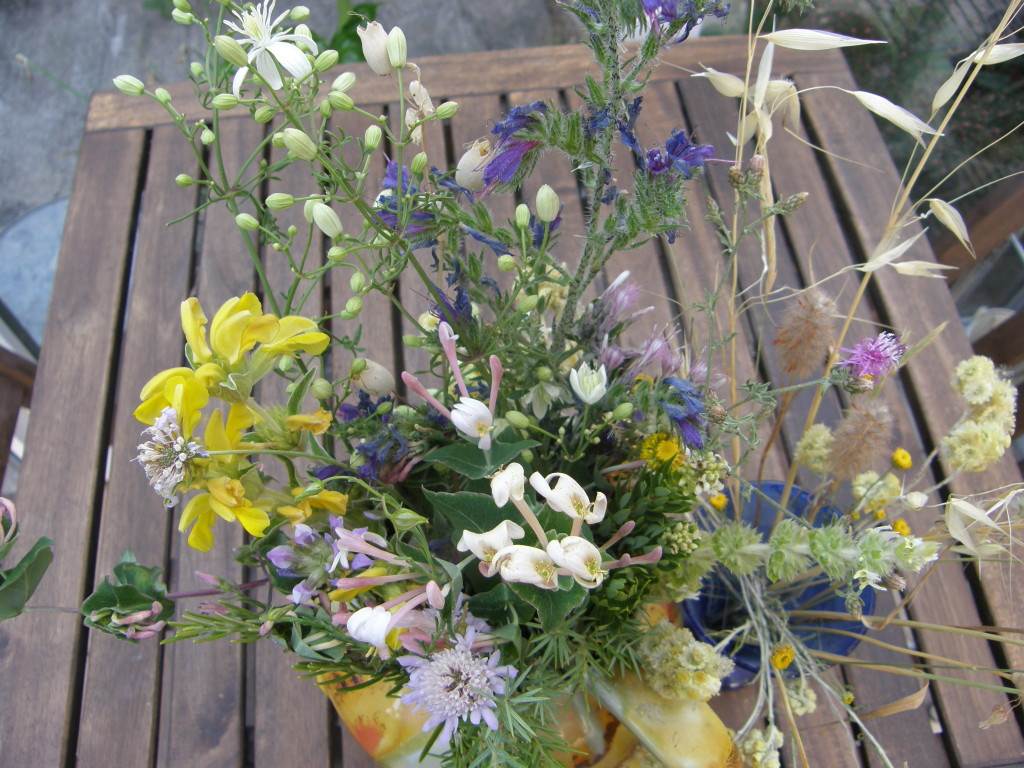 Posy of June flowers  Garrigue
